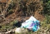 Đà Nẵng: Xe tải rơi xuống suối, một người tử vong