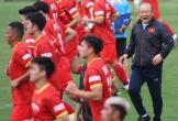 Đội tuyển Việt Nam: Mong manh