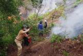 Người đàn ông bị chết cháy tại rừng keo của gia đình
